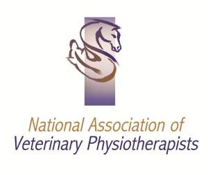 NAVP Logo